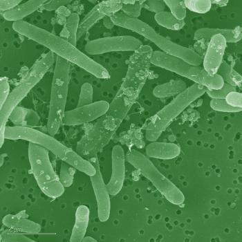 mikróby