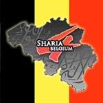saria4belgicko