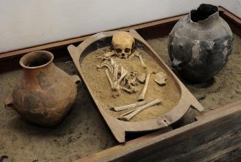 Artefakty v múzeu Nižná Myšľa