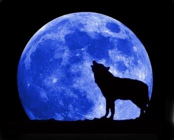 Modré zafarbenie mesiaca spôsobuje množstvo smogu v atmosfére, napríklad z požiarov