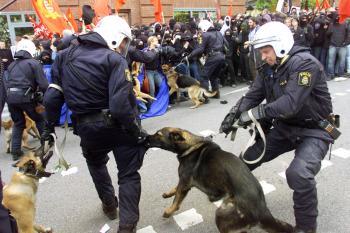 Policajní psi sú cvičení, ale napriek tomu aj oni sa vedia vymknúť kontrole
