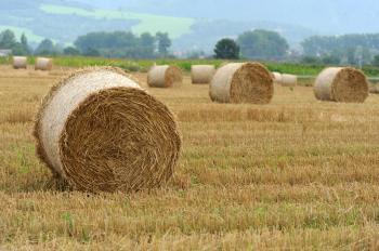 Slama, ktorá ostáva na poliach po žatve sa môže aj predávať. Zhodnocuje sa v biomase určenej na výrobu energie alebo tepla