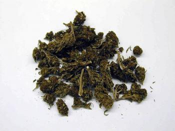 Viaceré štúdie už ukázali, že marihuana poškodzuje mentálne schopnosti drogujúcich. Zdravie však nemenej postihujú aj alkohol či tabak