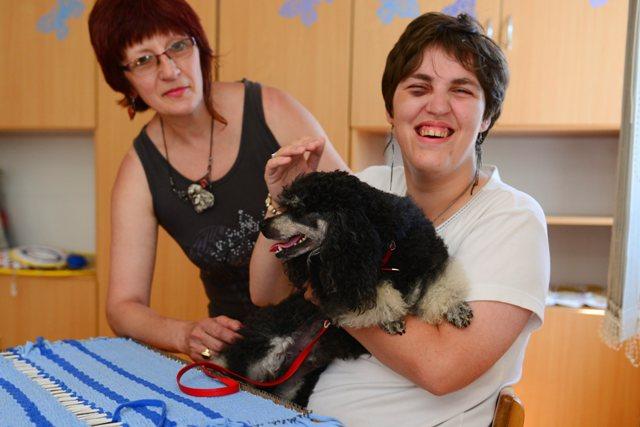 Na snímke v pozadí Jana Hristová z obce Fintice od Prešova počas canisterapie (liečba pomocou psov) s klientkou DSS