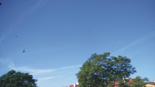 Po hodine, fotografia je urobená približne o 9:20, sú kondenzačné stopy ešte stále na oblohe dobre pozorovateľné