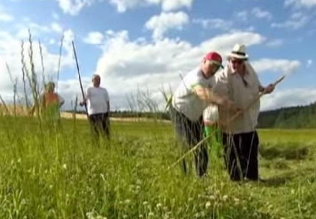 Na snímke Alexander Lukašenko ukazuje ako sa  kosí tráva