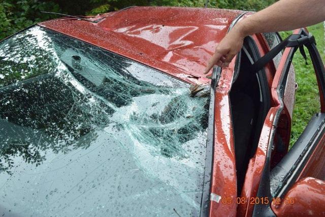 Na snímke automobil Škoda Octavia po páde stromu
