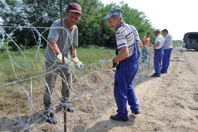 Na snímke maďarskí pracovníci upevňujú žiletkový ostnaný drôt na konštrukciu plotu na maďarsko-srbských hraniciach neďaleko maďarského mesta Morahalom