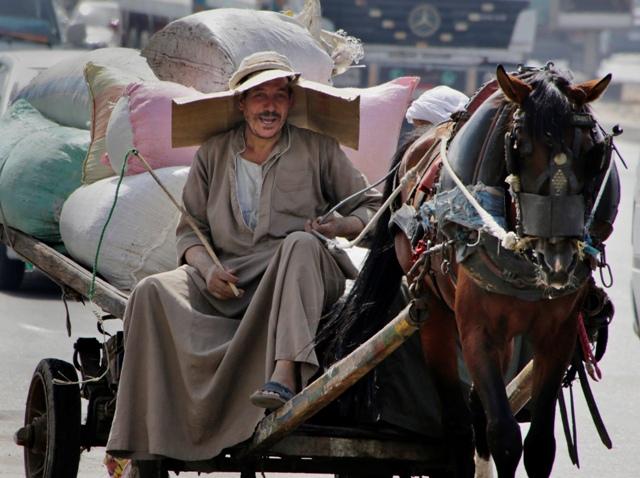 Na snímke egyptský roľník na konskom voze s kusom kartóna na hlave ako ochranou pred priamym slnkom na ulici v Káhire