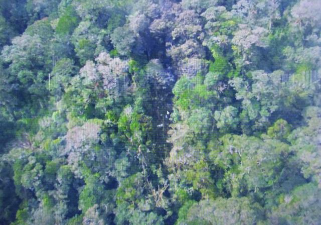Na snímke zo 17. augusta 2015 časť vraku lietadla, ktorý indonézsky národný pátrací tím (BASARNAS) identifikoval ako zmiznuté lietadlo spoločnosti Trigana Air Service, v odľahlej provincii Papua. Indonézski záchranári objavili dnes 32 tiel vo vraku lietadla spoločnosti Trigana Air Service, ktoré sa počas víkendu zrútilo v odľahlej provincii Papua