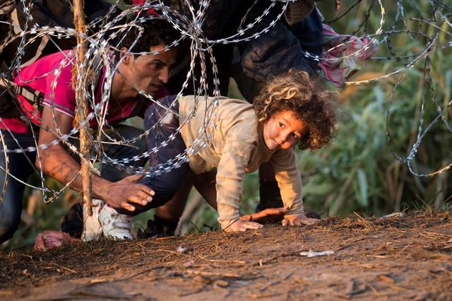 Na snímke migranti podliezajú ochranný žiletkový plot na maďarsko-srbských hraniciach