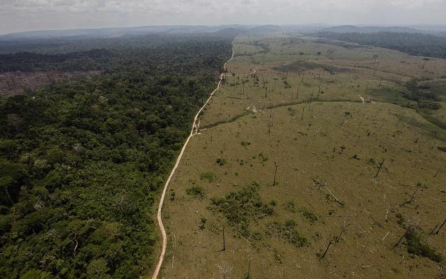 Amazonský prales - vpravo odlesnené územie, vľavo stoja (zatiaľ) stromy