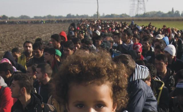 Na archívnej snímke  kráčajúci migranti cez pole