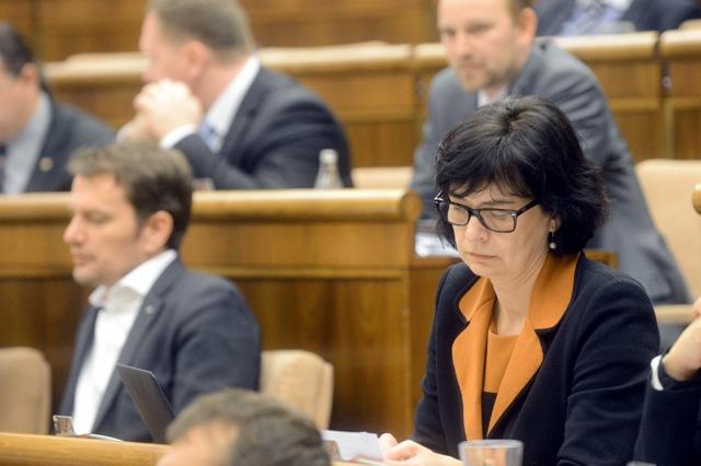 Na ilustračnej snímke vpravo poslanklyňa NR SR Lucia Žitňanská