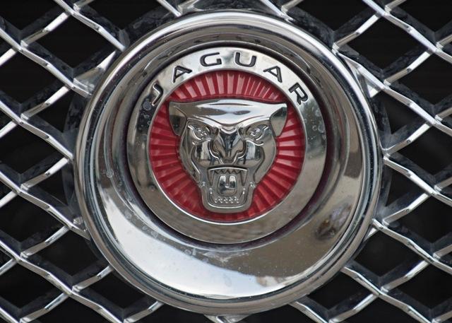 Na snímke logo automobilky Jaguar