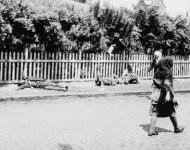Tragédia hladu roku 1932 bola strašná... Charkov. Telá mŕtvych od hladu ležia priamo na ulici. No ešte strašnejšie sú dnešné politické špekulácie založené na tejto tragédii...