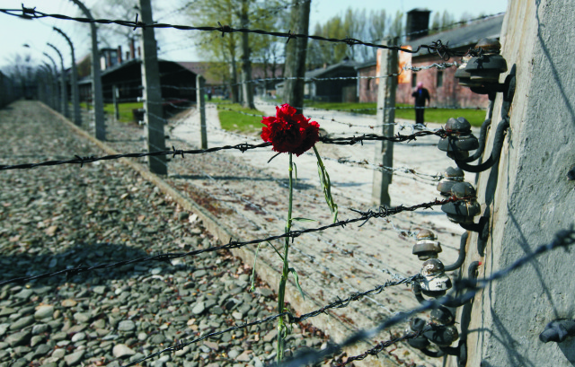 Na archívnej snímke oplotenie v  táborovom dvore v bývalom koncetračnom tábore Auschwitz-Birkenau