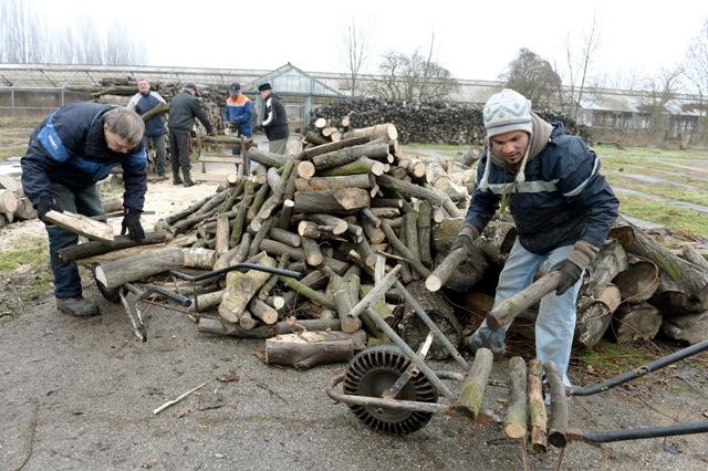 Na snímke bezdomovci počas pílenia a uskladnenia dreva na kúrenie