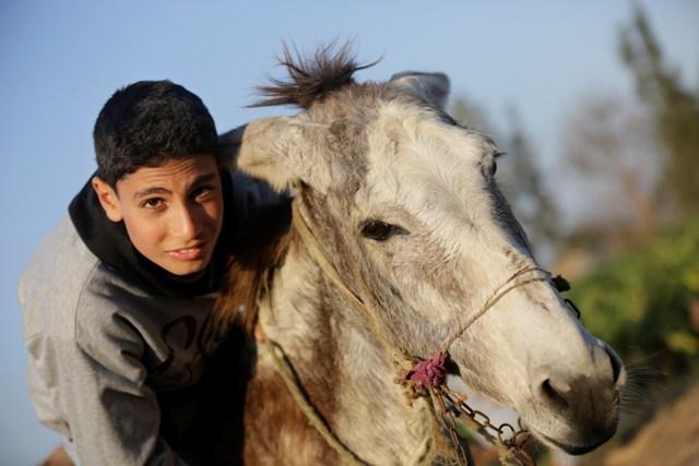 Na snímke štrnásťročný farmár Ahmed Ajman so svojím somárom