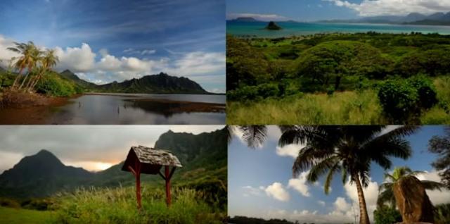 Havajské ostrovy sa stali globálnym centrom pre  testovanie GMO