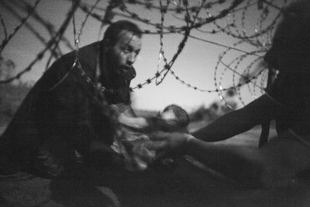 Na snímke víťazný záber prestížnej fotografickej súťaže World Press Photo, na ktorej sýrske batoľa podáva jeho otec do rúk ďalšej osoby pod ostnatým drôtom v maďarskej pohraničnej obci Rözske
