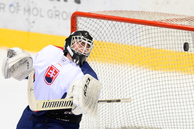 Na snímke slovenský hokejový brankár do 18 rokov Roman Durný