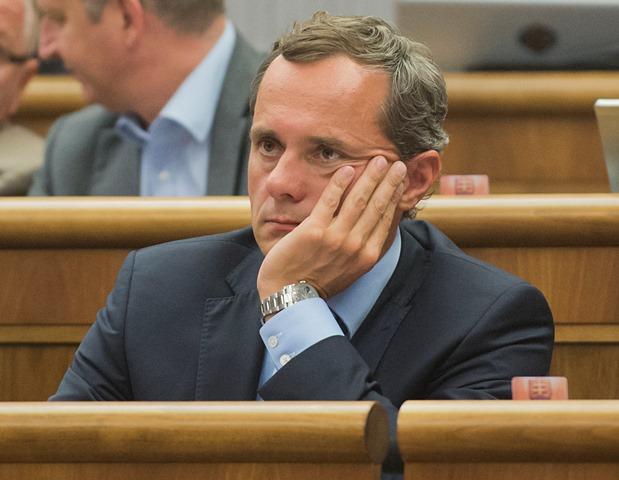 Na snímke poslanec NRSR Radoslav Procházka (#Sieť)