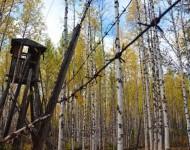 Bývala strážna veža na sibírskom Gulagu