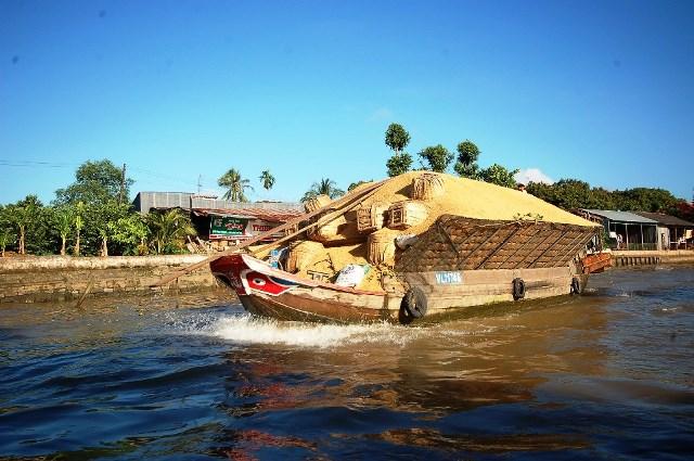 Ma snímke Delta Mekongu
