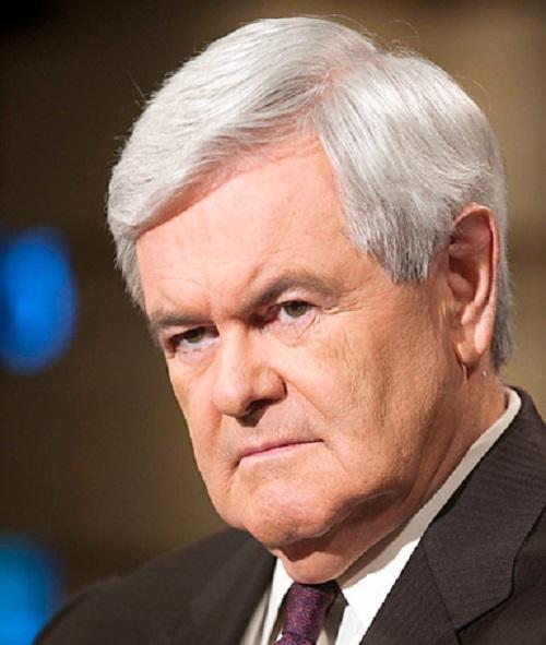 Newt Gingrich Foto:Facebook