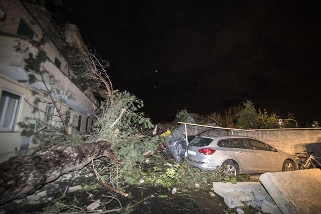 Na snímke sú popadané stromy po tornáde v Cesano di Roma asi 30 kilometrov severne od talianskej metropoly