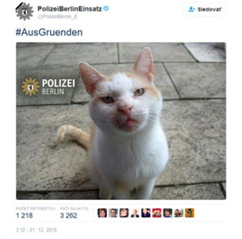 Berlínska polícia zľahčuje teroristický útok: Namiesto falošných správ radšej zdieľajte mačiatko