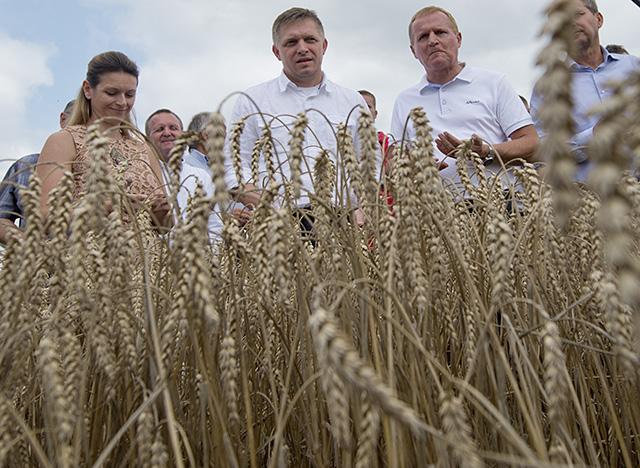 Na snímke zľava predsedkyňa Družstva podielnikov Devín Zuzana Pagáčová, premiér SR Robert Fico a predseda Slovenskej poľnohospodárskej a potravinárskej komory (SPPK) Milan Semančík