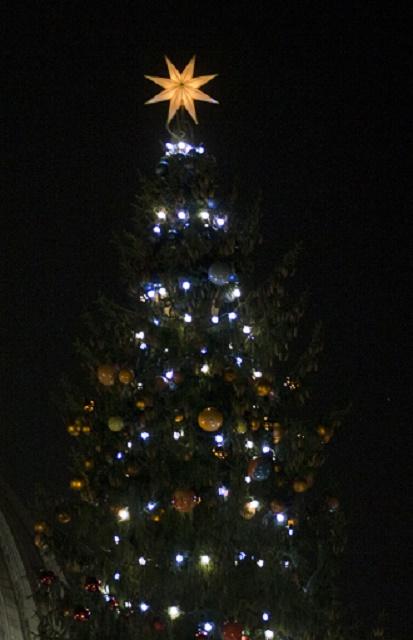 Ilustračné foto vianočného stromčeka