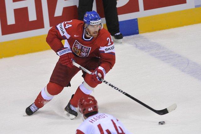 Na snímke český hokejista Martin Havlát
