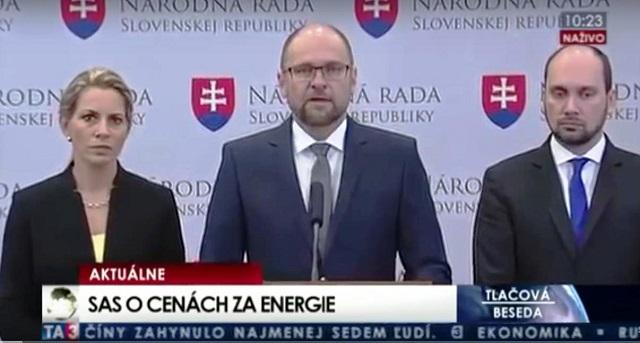 """Richard Sulík: """"Stabilné ceny energií"""" a """"business model Jozefa Holjenčíka"""""""