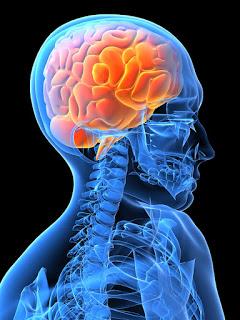 Brain scan datovania Internet Zoznamka podvody Keňa