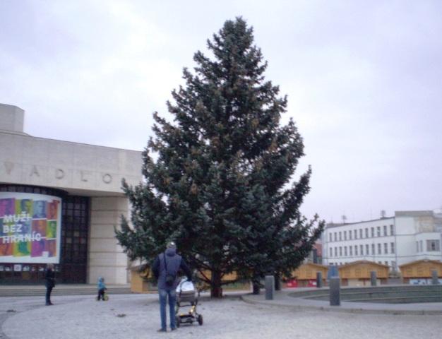 6ee9128cf2dd Svätoplukovo námestie v Nitre so stromom i stánkami. Vianočné ...