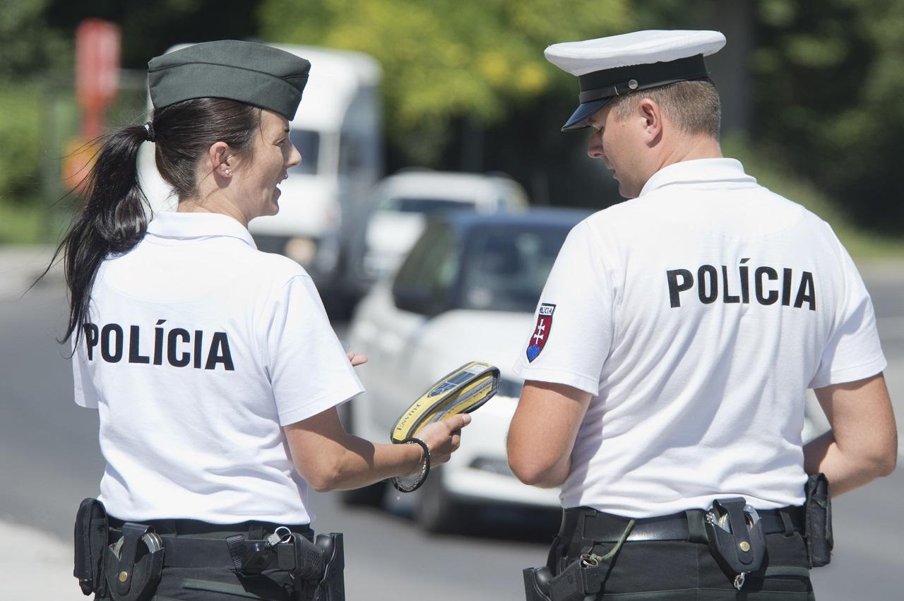 policajt policajtka kontrola vodič