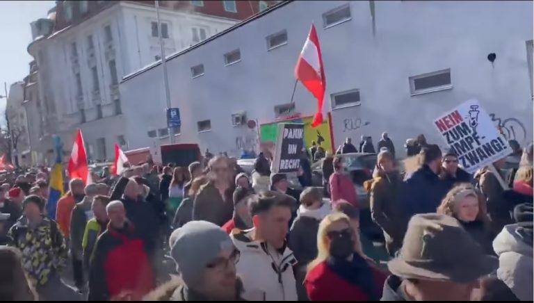 protesty_vieden