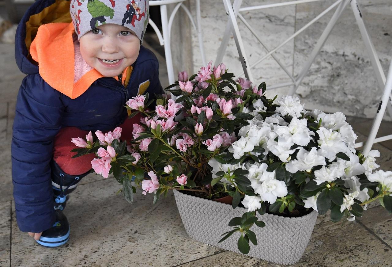 Otvorené kvetinárstvo v Košiciach