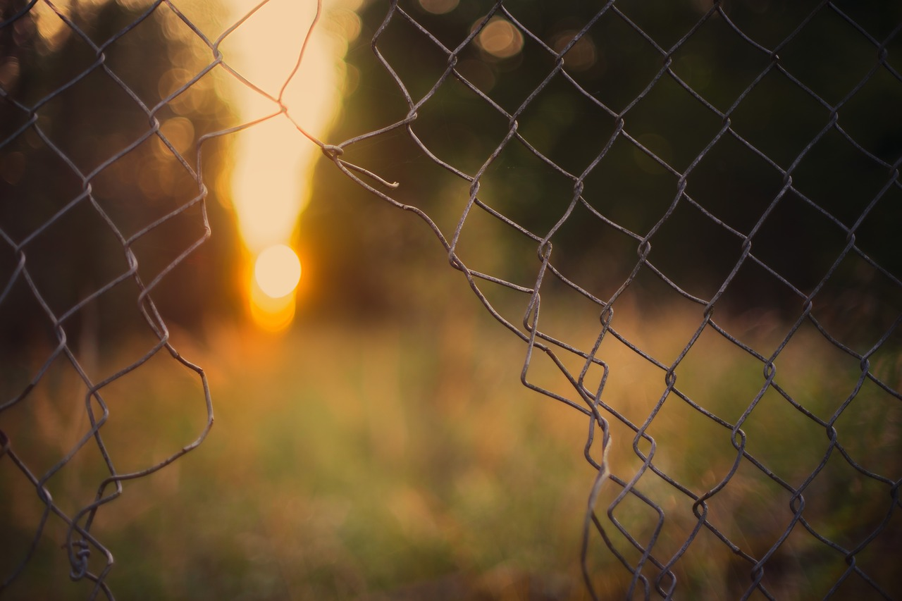 plot, sloboda