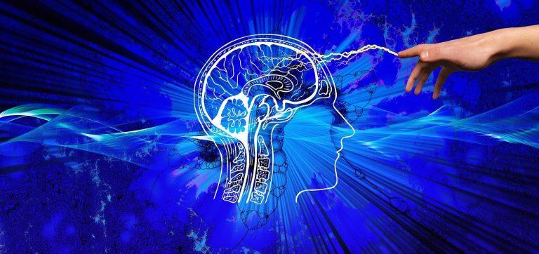 mozog, poruchy ci vedomosti