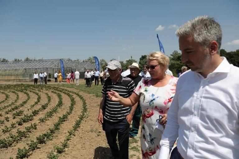 Trnka, Agrokruh