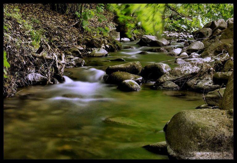 Tajovský potok
