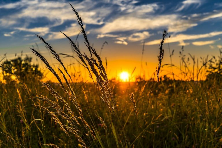krajina, vidiek