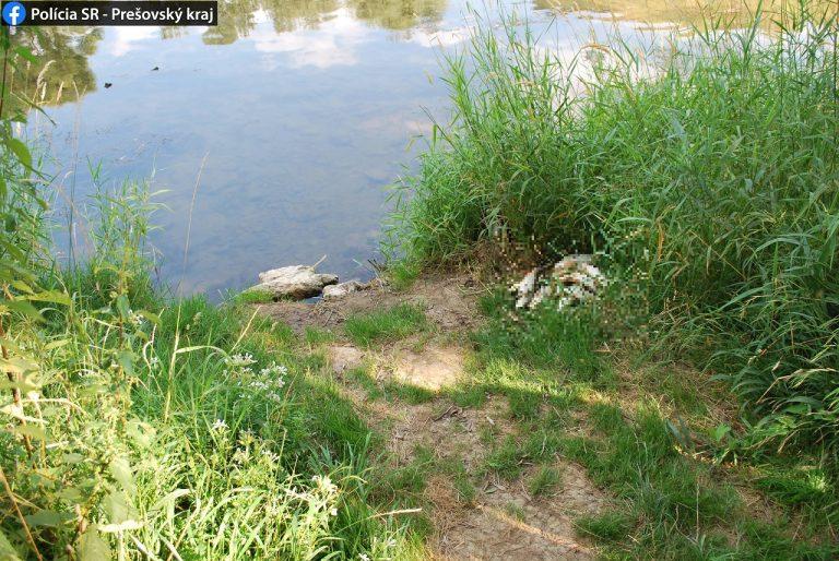 úhyn rýb v rieke Laborec